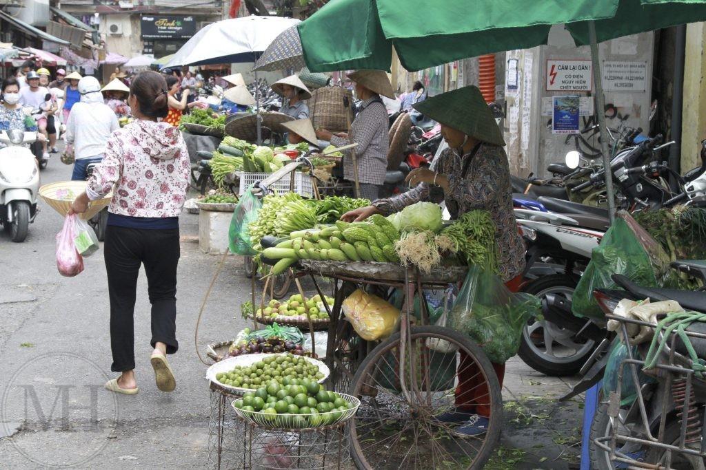 Gadesalg i Hanoi familieferie Vietnam