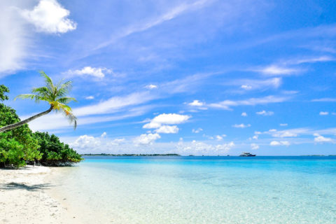 caribian beach