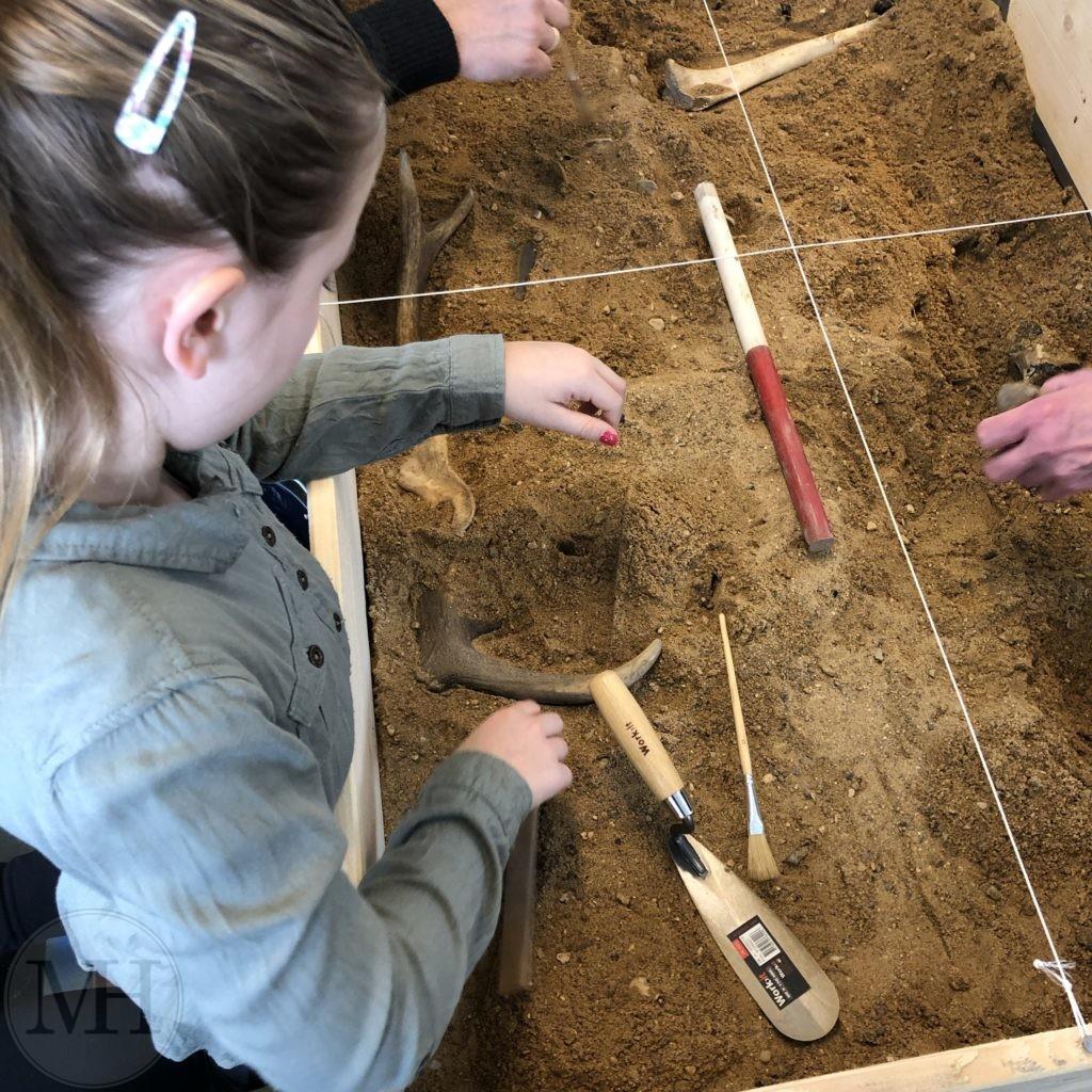 arkæologisk udgravning
